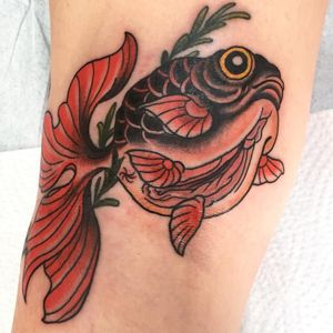 Pussys pussys pussys.. #japanesetattoo #neotraditional #traditional #tattooart #classictattoo #japanese #shunga #goldfish #irezumi #japan #alinabushman #tattooart #tattooer #tattooing #tattooartist #pussy #tätowierung #cooltattoo #tattooshop #tattoos