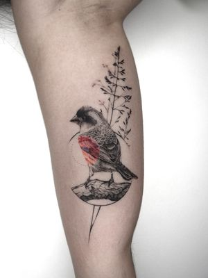 bird tattoo by ege onat gezer #bird #realistic
