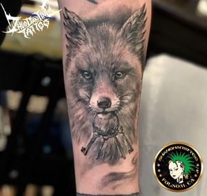 Little fox portrait 🦊