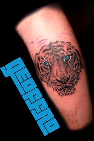 Tiger today for Jacob