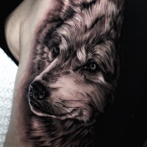 Wolf #wolf #realism #realistic #realistictattoo