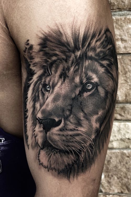 Lion #liontattoo #animalportrait #halfsleeve #blackandgrey #realistictattoo #Austin #austintexas #ATX #dallastattooartist #CaliforniaTattoos #losangeles #newyork