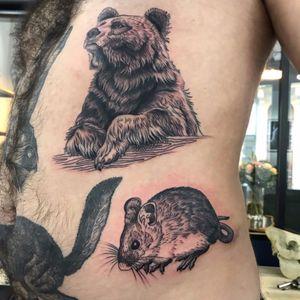 #bear #ribs #mouse #pills #animals #linework #black