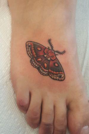 Small moth (covering another piece) #tattoo #tattoolife #tattooart #saniderm #envyneedles #rosewatertattoo #tattoos #tattooartist #art #ink #inked #lynntattoos #inkedmag #portland #portlandtattooers #portlandtattoo #pdx #pdxartists #pdxtattooers #pdxtattoo #tattooed #tatsoul #fusiontattooink #fkirons #bestink #vegan #tattoosnob #stencilstuff #crueltyfree #mothtattoos