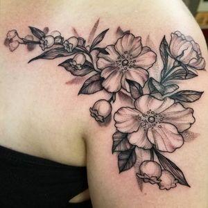Floral shoulder chest piece.   #floral #cherokeerose #flowers #lilyofthevalleytattoo #bayareatattooartist #bayareatattoo #california #floraltattoo #botanical #holdfastrwc #redwoodcity #flower #flowertattoo