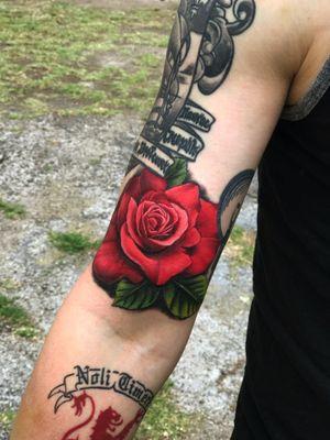 Realism rose
