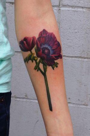 Realistic Anemone flower