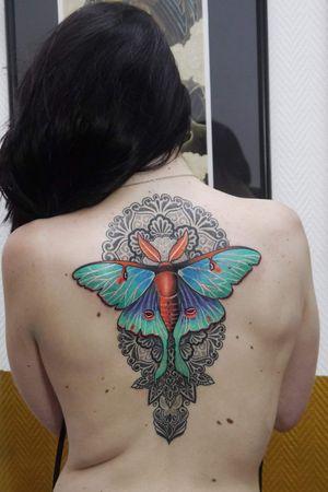 Luna moth mandala #mandalatattoo #lunamoth #mothtattoo #tattoodo #tattoooftheday