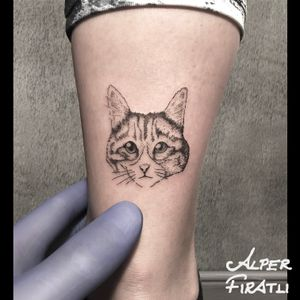 #cat #kitten #minimal #tattoo #linework #tattooartist #tattooidea #art #tattooart #tattoooftheday #tattoostagram #ink #inked #customtattoo #customdesign #tattooist #crosshatching #dotwork #savemyink #tattooisartmag #tattoo_artwork #tattoo_art_worldwide #alperfıratlı #linework #microtattoo