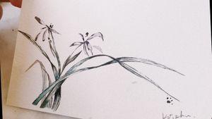 #flowertattoo#watercolorflowertattoo #chinesetattoo #melbournetattoo #melbournetattooartist #melbournetattoostudio