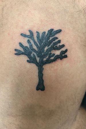 First tattoo #apprenticetattoo #apprenticework #realtree #blackart #dallastattoo