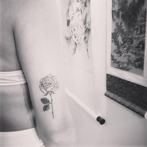 Rose 🌹 for the birthday girl