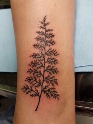Dainty type tattoo work.