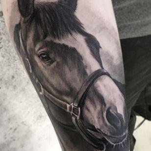 Horse tattoo by Christelle Damien #ChristelleDamien #horse #animaltattoo #portrait
