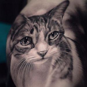 Tattoo by Coreh Lopez #CorehLopez #Awesometattoos #besttattoos #tattoodoapp #appartists #trendingtattoos #toptattoos #tattoodoappartists #blackandgrey #cat #kitty #petportrait