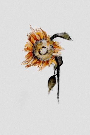 #sunflowertattoo #deadflowertattoo#deadflower#melbournetattoo#melbournetattooist