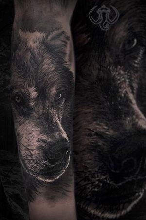 #madmamont #blackandgrey #blackngrey #realistic #realism #black #horror #animal #wolf
