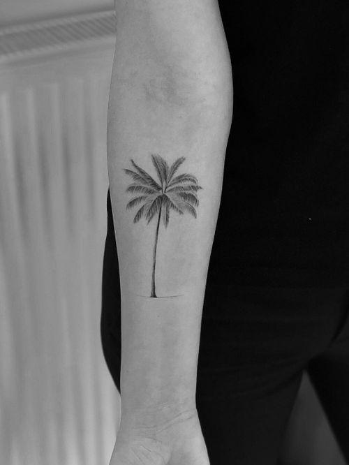 Palm tree #palm #tattooartist #tattooart #Black #blackandgrey #blacktattoo #blackwork #Tattoodo #ink #alianilercel