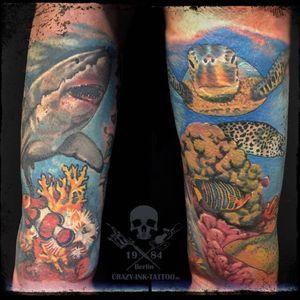 Moin moin,  hier ein #underwatertattoo . kurzfristig Termine möglich... . Infos, Auskünfte, Fragen, wie immer +4917627112764 auch WhatsApp...⠀⠀ . 📷@crazy.ink.tattoo.berlin . https://crazy-ink-tattoo.de . https://facebook.com/crazy.ink.tattoo.berlin . https://instagram.com/crazy.ink.tattoo.berlin . https://plus.google.com/+CrazyInkTattooBerlin . . . . #tattoo #tattoos #berlin #tattooberlin #tattoomoabit #tattooshopberlin #crazyink #crazyinkberlin #crazyinktattoo #crazyinktattooberlin #tattoist #berlintattooer #bodyart #berlintattooartist #berlintattooartists #tattooart #tattooideas #tattooideasforguys #naturetattoo #colortattoo #colortattoos #sealifetattoo #sealifetattoos #realistikink #seaturtletattoo #sharktattoo #realistictattoo #divetattoo #berlintattooshop