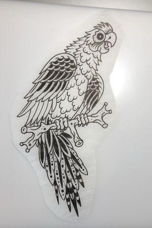 Parrot $250