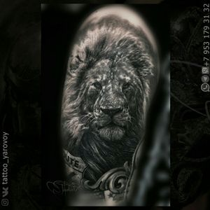 Realistic tattoo black and gray with the lion. Реализм черно-серый со львом.