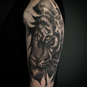 Black and white realism tattoo on arm of tiger hidden in the blossoms.