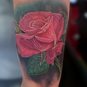 Pink rose completed on day 1 at musink