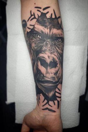 Gorilla done by Gaz #tattoos #tattoo #bngtattoo #realism