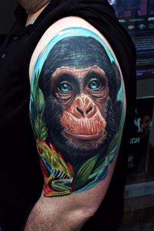 Blue eyes ! #monkey #chimpanzeetattoo #monkeytattoo #colortattoo #realism #tattooartist #tattoo #AlanRamireztattooartist