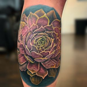 Began my first succulent tattoo last night. We're going back in to apply more of that cool marbled textures and refine the contrast in a few weeks! Hope you guys enjoy!🌿