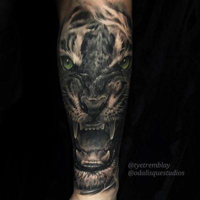 #tiger #wildlife #bigcat #blackandgrey #realism