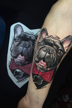 #tattoo #ink #tattooed #tattoosociety #tattooart #rigatattoo #amazingtattoos #татумастер #inked #tattooartist #tattooaddict #besttattoos #skinart_mag #skinink #tattoodo #tattoolife #тату #inkedup #skindeep #sullentv #татуировка #freshlyinked #colortattoo #realistictattoo #bulldog #bulldogtattoo