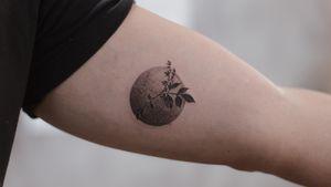 Matching tattoo - China Doll Plant - dotwork - botanical