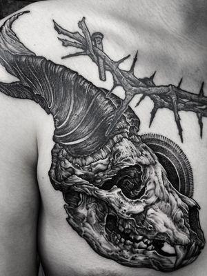 blackwork animal skull! #blackwork #blackworktattoo #busantattoo #dotwork #KoreanArtist #busan #blackworks #ulsantattoo #ulsan #skulltattoo #blackworkskull