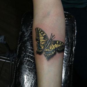 A cute little walk-in #butterfly I did the other week 💕 #tattoo #tattoos #ink #inked #tattooidea #tattooideas #amazingtattoos #realismtattoo #femininetattoos #tattoodesign #besttattoos #amazingtattoo #superbtattoos #fusionink #tattoodo #tattoodooapp #lizvenom #floraltattoo #rosetattoo #tattoobutterfly #edmontontattoo #edmontonink #skinartmag #yellow #small #petite #dainty #farfalle #Papillon #swallowtail #butterflytattoo #tinytattoos #smalltattoos #3dtattoo #3dbutterfly