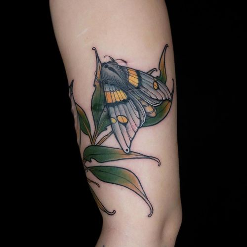 Tattoo by Maria Dolg #MariaDolg #coveruptattoos #coveruptattoo #coverup #tattoocoverup #scarcoverup #butterfly #flower #floral #leaves #plant #neotraditional #color