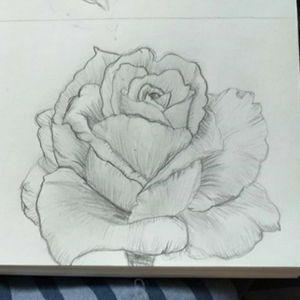 #rose #realismdrawing #realism #realistic #pencilart #pencildrawing