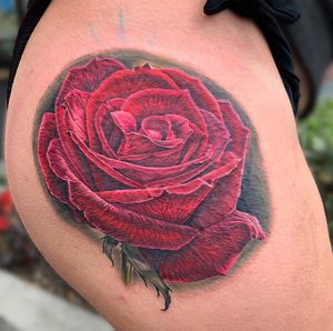 A red rose to start off felicitys thigh piece