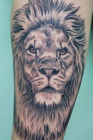 Beautiful lion tattoo done by artist Elias Mora at Arte Tattoo Studios located in Gainesville Georgia!