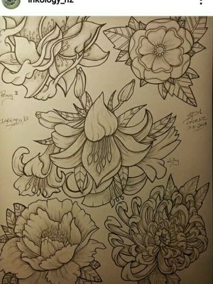flower flash page #flowers #peony #lilly #rose #blackandgrey #fullcolor #colormix #inknz #nz #christchurch #nz #inkologynz