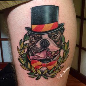 Boston terrier - for booking email me joshua@pandabinge.com #marylandtattooartist #baltimoretattooartist #annapolismd #downtownannapolis #dogportrait #portrait #neoteaditional #tattoo #dogtattoo #petrattoo #bostonterrier #bostonterriertattoo