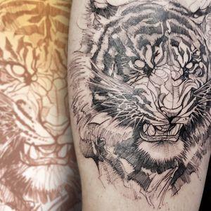 tiger sketch tattoo