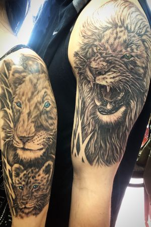 Lions!!! #liontattoo #realismtattoo #blackandgreytattoo #staugustinetattooartist