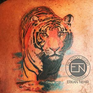 Color Realism Tiger Tattoo by Erkan Nehir  #tiger #tattoo #tattoos #tigers #color #colored #realism #animal #wild #wildlife #cat #cats #realistic #tigertattoo #erkan #nehir #erkannehir #entattoostudio #marmaris