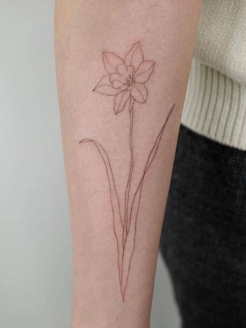 Tattoo by Pauline Tattoo #PaulineTattoo #finelinetattoos #fineline #delicate #linework #illustrative #daffodil #flower #floral #minimal