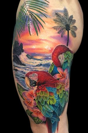 #macaw and #sunset tattoo by Liz Venom #yegtattoo #edmontontattoo #780tattoo #yegink #edmontonink #780ink #yegtattoos #edmontontattoos #edmontoninked #edmontontattooshop #edmontontattooartist #edmontontattoostudio #edmonton #780 #yeg #tattoo #tattoos #tattooed #tattooidea #besttattoos #amazingtattoo #amazingtattoos #tattoodesign #tattoodesigns #bombshelltattoo #bombshellyeg #yegpiercing #edmontonpiercing #aberta #canada #sunsettattoo #beach #tropica #birds #plumeria #frangipani #parrot #bright #color #colour