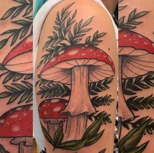 #mushrooms