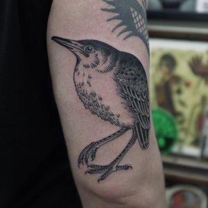 #andreivintikov #minsk #goodsign #tattoominsk #bird #birdtattoo