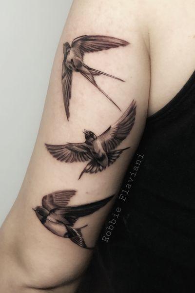 #swallow #Golondrina #swallows #blackandgrey #black #realism #realistic #minirealism #smalltattoo #smallrealism #bird #birds #fly #blackAndWhite #RobbieFlaviani #tattooartist #tattoooftheday