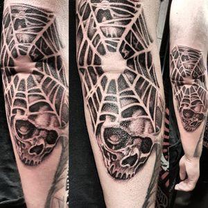 #cobweb #skullweb #web #webskull #skulls #skulltattoo #blackandgreytattoo